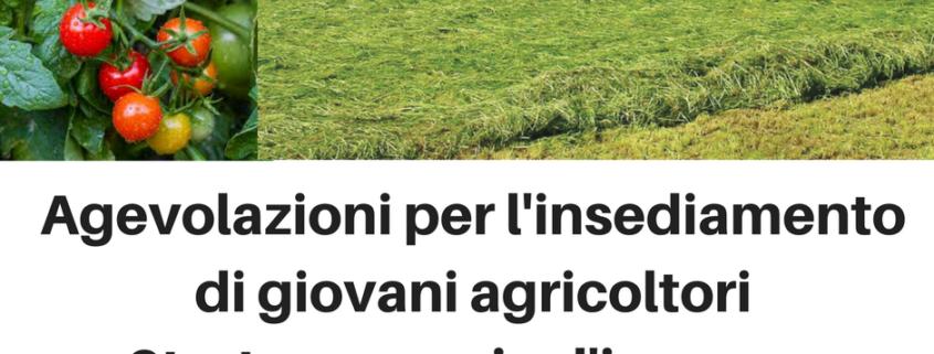 agevolazioni giovani agricoltori